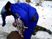 Március közepéig 193 fagyhalál történt Magyarországon