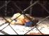 Folytatódik a ketrecharc- a sportállamtitkár felel a következő beszakadt tüdejű fiúért